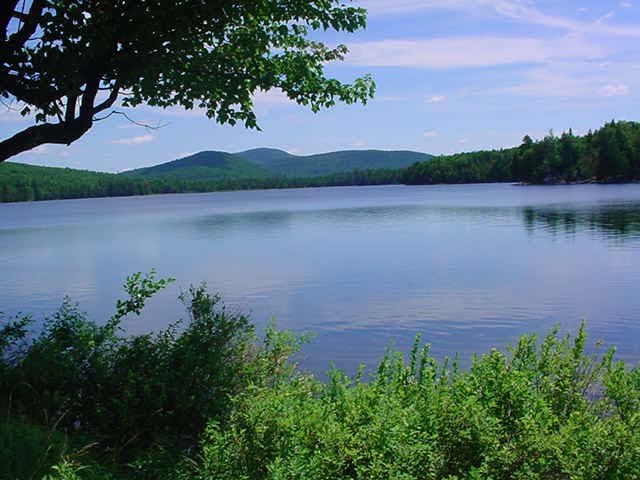 once more by the lake Once cheated of its fish by pollution, cheat lake now a thriving fishery  today's  anglers enjoy a lake that is considerably richer and more.
